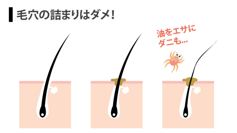 matsueku-off-mare-7
