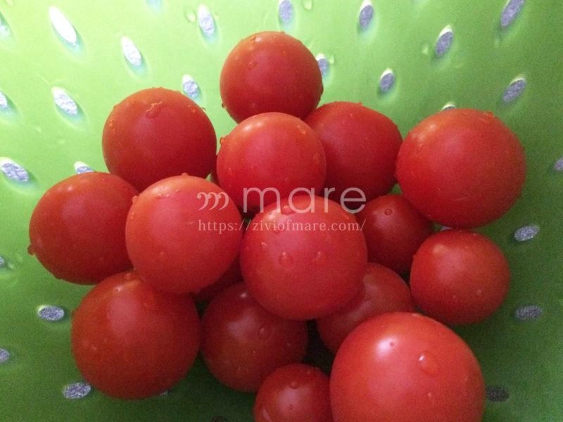 イタリアはトマトがおいしい!すぐ食べられる保存方法が便利2
